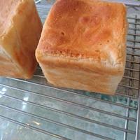 グルテンフリー 米粉食パン