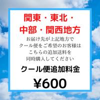 関東・東北・中部・関西地方へのクール便専用アイテム