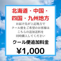 北海道・中国・四国・九州地方へのクール便専用アイテム