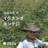 コロンビア イグナシオ キンテロ / 浅煎り (Medium Roast)