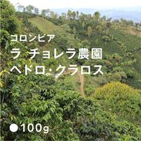 コロンビア ラ チョレラ農園 ペドロ クラロス / 浅煎り (Medium Roast)