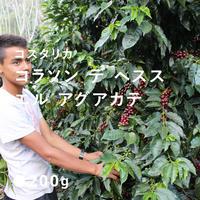コスタリカ コラソン デ ヘスス エル アグアカテ/ 浅煎り Medium Roast)