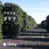 ブラジル ダテラ / 深煎り (French Roast)  100g