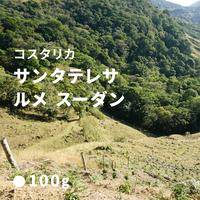 コスタリカ サンタテレサ 2000 ルメ スーダン/ 浅煎り (Medium Roast)  200g