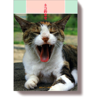ネコ的幸せ