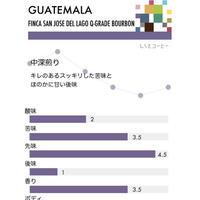 グァテマラ・アティトラン/中深煎り(100g)