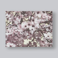 Thomas Demand & Ben Lerner『BLOSSOM』【USED】