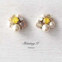 春夏数量限定 Mix stone *B×Y / Earrings