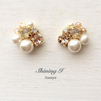 Mix stone *Beige / Earrings