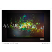 「情念との反芻」展示作品:「湿った光に絡みつく情念と自然 (湾仔・香港)」