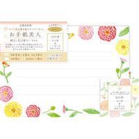 LT304お手紙美人 友人へ 百日草