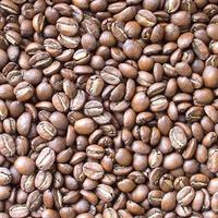 自家焙煎コーヒー豆 グァテマラ・サンタフェリーサ農園 レッドティピカ  ダブルソーク1550 ミディアムロースト 100g
