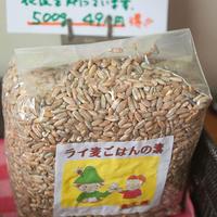 ライ麦ごはんの素・お徳用500gパック