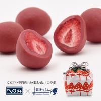 しょこらの実〈巾着  彩苺-いろどりいちご- 〉