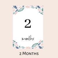 【月齢フォト 2か月Baby】