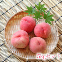 山梨産ピンク桃6玉約5kg前後16-22玉秀品