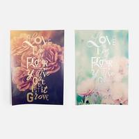 Flowers 2点セット