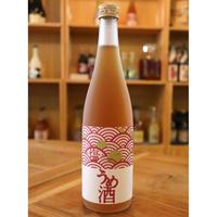 塩うめ 720ml / 北島酒造