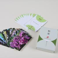花カード 36枚