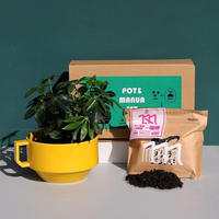 【ONLINE限定】2/1(金)発売 HASAMI × manu coffee 『POT & MANUA SET』