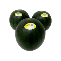 黒小玉西瓜 3玉入