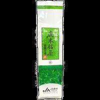 緑茶【松】