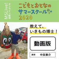 期間限定配信(11/1まで)中田兼介さん「教えて、いきもの博士!」動画版