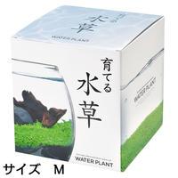 育てる水草 M 813