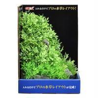 (まとめ)癒し水景 アクアキャンバス プランツM【×3セット】