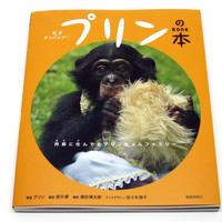 天才チンパンジー プリンの本