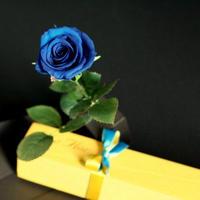 [プリザ]飛び出すバラ The Flora /ブルー