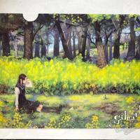 A4クリアファイル『春の午睡』