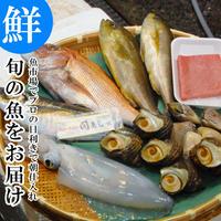 市場から直送する 旬の魚介 鮮魚 セット 極 関アジ または 関サバ が必ず入る