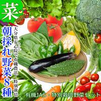 安心院 朝採れ野菜 おまかせ8種セット 有機JAS4種以上 + 特別栽培野菜 詰め合わせ