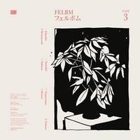 FELBM / TAPE 3/TAPE 4 (LP)
