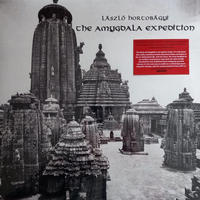 LASZLO HORTOBAGYI / THE AMYGDALA EXPEDITION (LP)