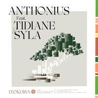 ANTHONIUS / ITOIGAWA (LP)