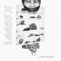 TIBOR SZEMZO / ARBO X (LP)
