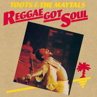 TOOTS & THE MAYTALS / REGGAE GOT SOUL (LP)
