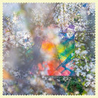 FOUR TET / SIXTEEN OCEANS (LP)