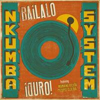 NKUMBA SYSTEM / iBAILALO DURO! (LP)