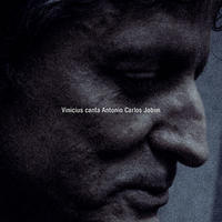 Vinicius Cantuaria / Vinicius canta Antonio Carlos Jobim  (LP)国内盤