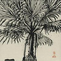 APANHADOR SO / MEIO QUE TUDO E UM (LP)