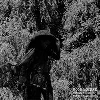 MOOR MOTHER / ANALOG FLUIDS OF SONIC BLACK HOLES (LP)
