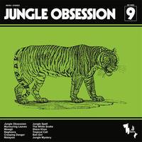 NINO NARDINI & ROGER ROGER / JUNGLE OBSESSION (LP)