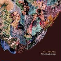 MATT MITCHELL / Pouting Grimace (CD)