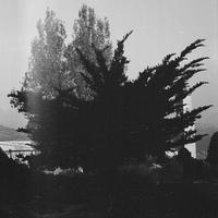 KINEMATIK / MURUR AL-KIRAM (LP)