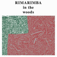 RIMARIMBA / IN THE WOODS (LP)