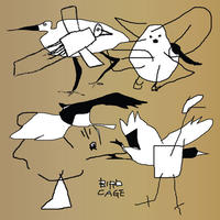 V.A. / Bird Cage: Birdfriend Archives (2LP)