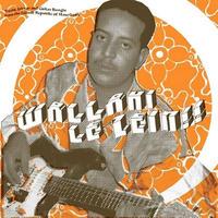 V.A. / WALLAHI LE ZEIN! (LP)